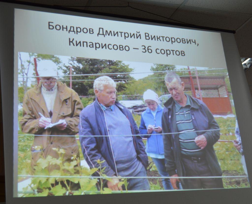 Хабаровский клуб виноградарей Амурская лоза Хабинфо