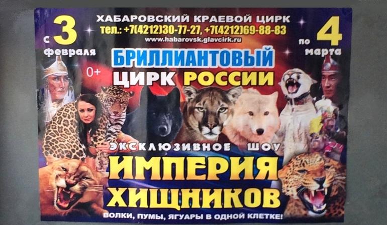 Цирковая программа Империя хищников