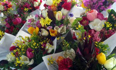Не говорите, что не хватило: всем хабаровчанкам по букету цветов
