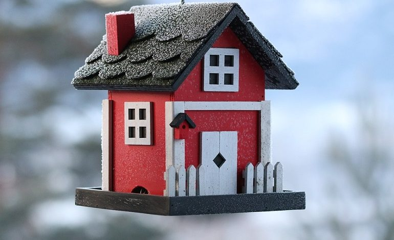 Весенняя акция «Птичкин дом»