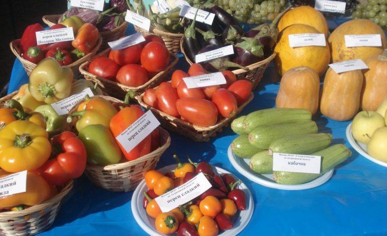Хабаровские садоводы-испытатели проверяют сорта на приживаемость в нашем регионе