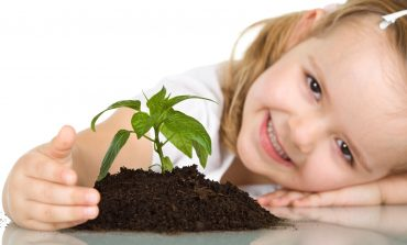 Даже дошкольникам не терпится завести свой огород на окне