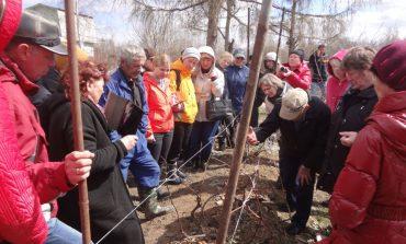 Мастер-класс по весенней агротехнике винограда провел народный испытатель Сергей Чудопалов