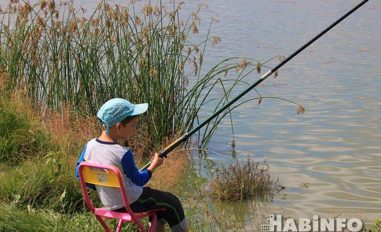 Рыбаки рано обрадовались: щуки меньше, Ауха в «Красной книги»