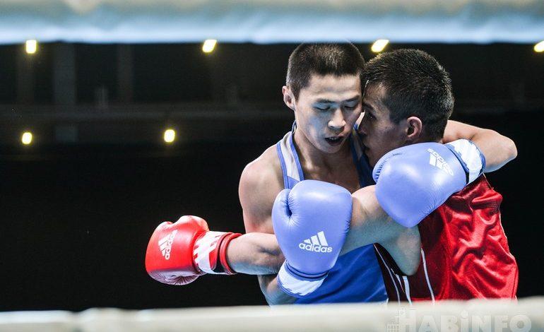 День четвёртый: прямая трансляция международного турнира по боксу в Хабаровске