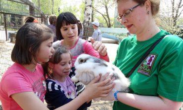 Зоотерапия в Хабаровске: как животные помогают в реабилитации детей-инвалидов