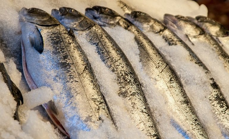 «Доступная» рыба оказалась недоступной