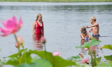 В погоне за лотосами: хабаровчане атаковали озеро с краснокнижными растениями