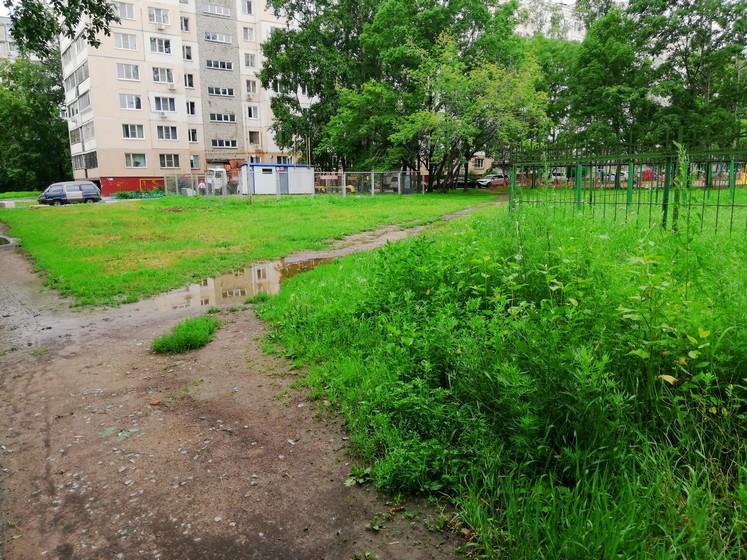 Кто должен косить траву в городе
