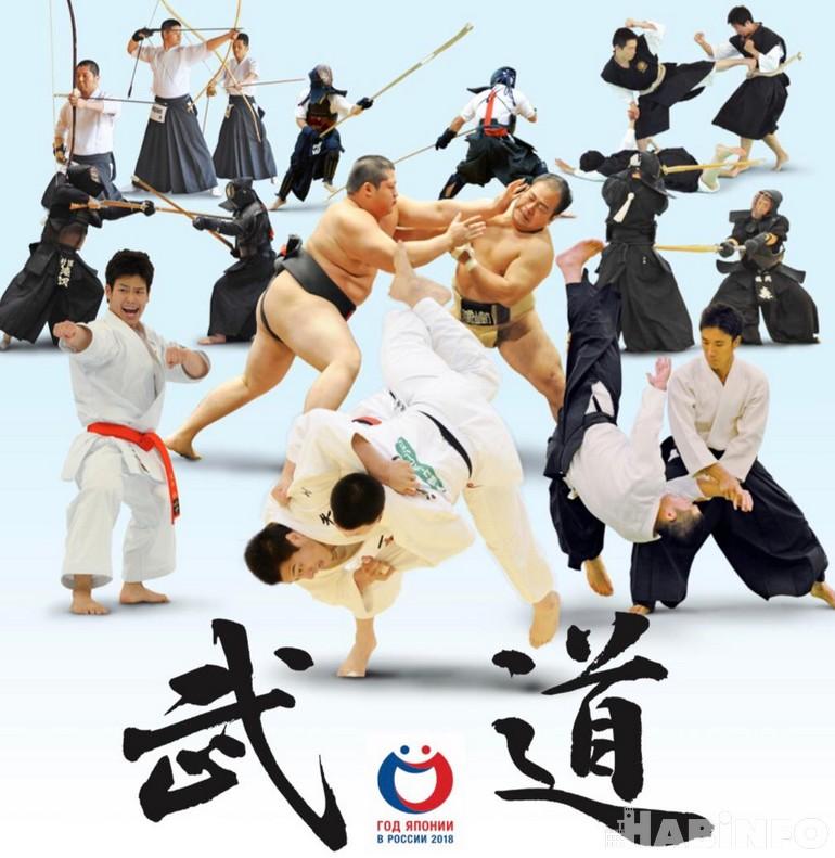 Фестиваль японских боевых искусств «Будокан»