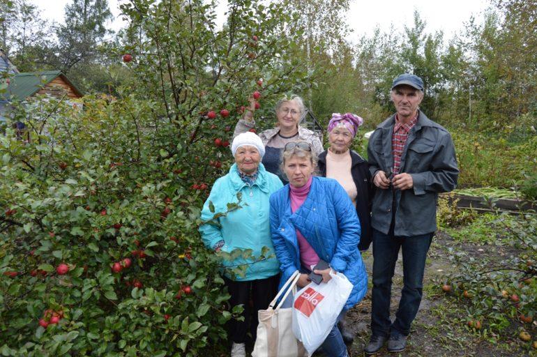 виноград уход осенью подготовка 8