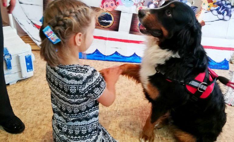Единственный в Хабаровске официальный пес-терапевт