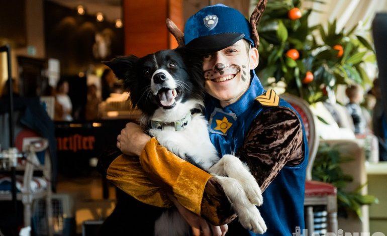 Человек собаке друг: акция «Искусство в поддержку животных» прошла в Хабаровске
