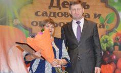 Наше «Солнышко» наградил губернатор