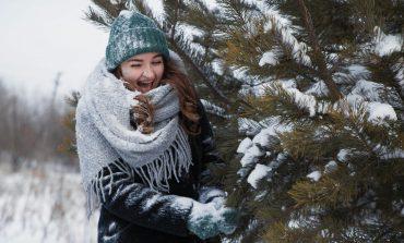 Чем заняться на новогодних каникулах в Хабаровске