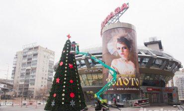 Где в Хабаровске самая красивая ёлка?