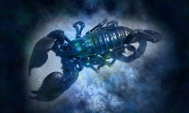 Гороскоп для Скорпионов на 2019 год: любовь, семья, карьера