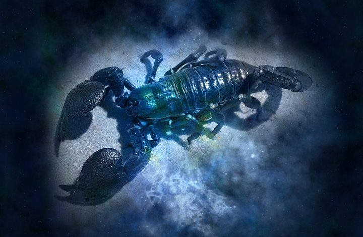 Гороскоп для Скорпионов на 2021 год: любовь, семья, карьера