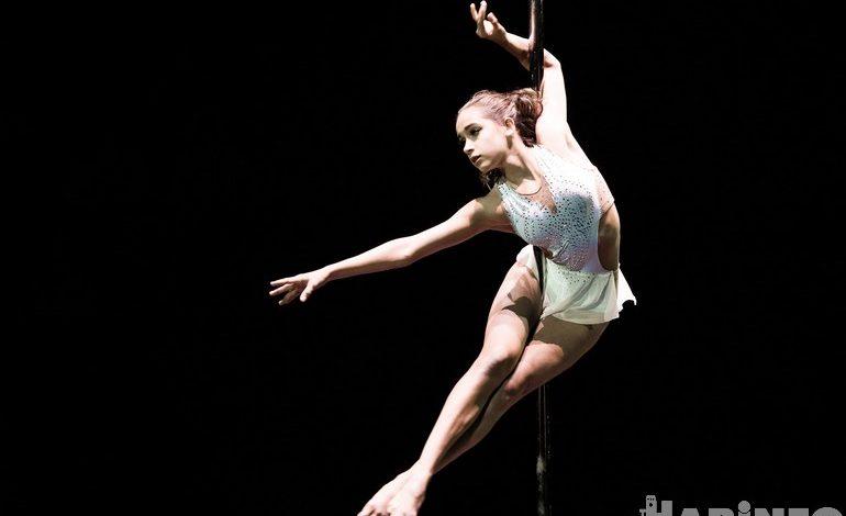 Танцы на пилоне и «Щелкунчик» под куполом: фестиваль циркового искусства в Хабаровске
