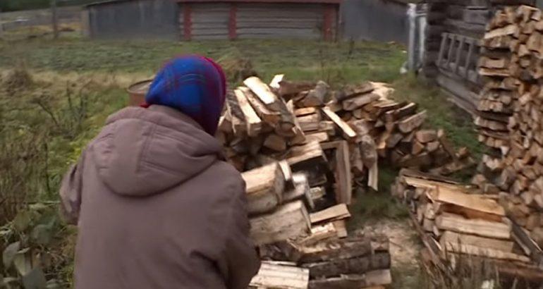 Валежник разрешили собирать бесплатно. Кому он нужен в Хабаровском крае?