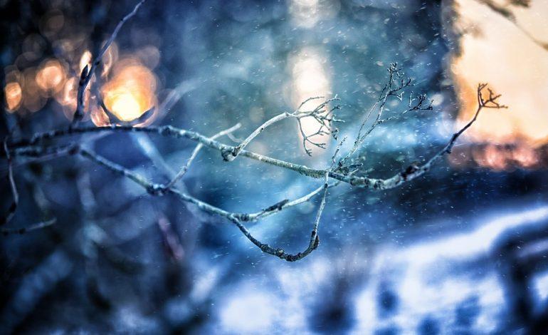 Погода в Хабаровске на выходные: мороз и ветер
