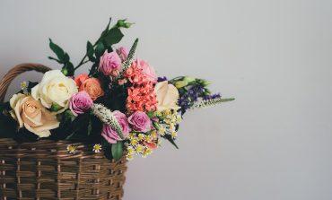 Роза с инструкцией: как вернуть увядшие цветы в магазин