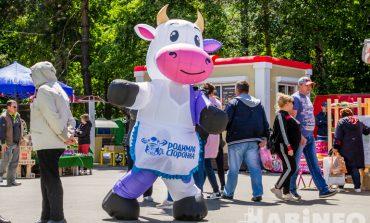 Без волшебника на вертолёте, но с мороженым: как прошла выставка-ярмарка «Наш выбор 27» в 2019 году