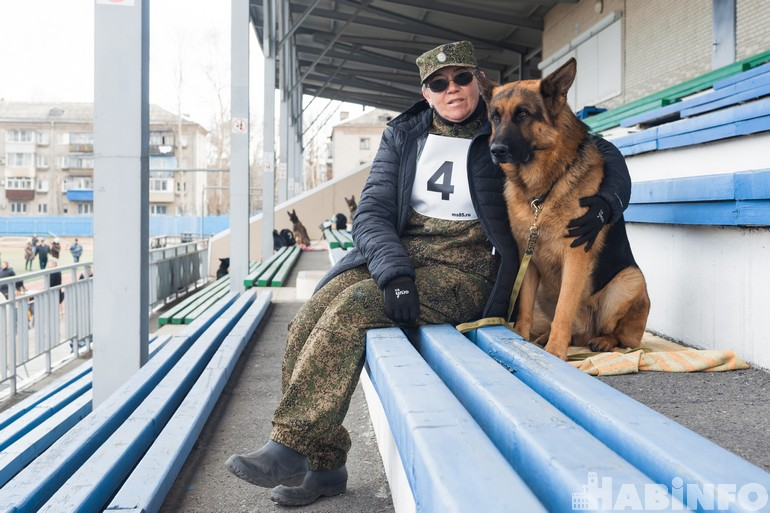 Собачье многоборье: как в Хабаровске прошёл дальневосточный турнир кинологов