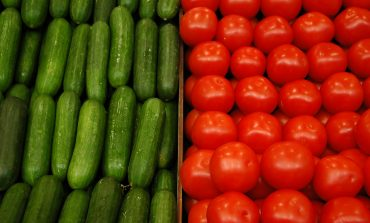 Почему томаты и огурцы плохо «уживаются» друг с другом