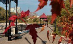 Новые законы октября: что изменится в жизни хабаровчан