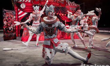 Покорили пеликанов – завоюют и ваши сердца: «Королевский цирк» приехал в Хабаровск