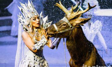 Сложно не поверить в волшебство: «Королевский цирк» заворожил хабаровских зрителей
