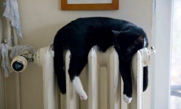 Ждём и согреваемся: когда в Хабаровске дадут отопление?