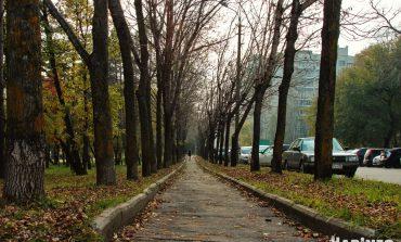 Новые законы ноября 2019 года: что изменится в жизни россиян