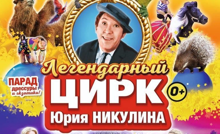 Парад дрессуры и экзотики: цирк Никулина в Хабаровске