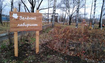 На «зелёных» тропах Хабаровска высадили уникальную флору