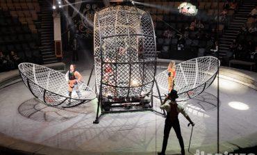 Змеи под куполом и девушки в «шаре смелости»: все смешалось в цирке Никулина