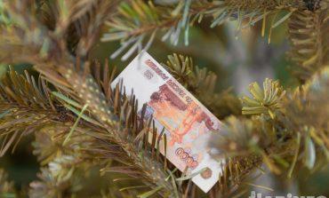 Елки в Хабаровске стали дороже вдвое