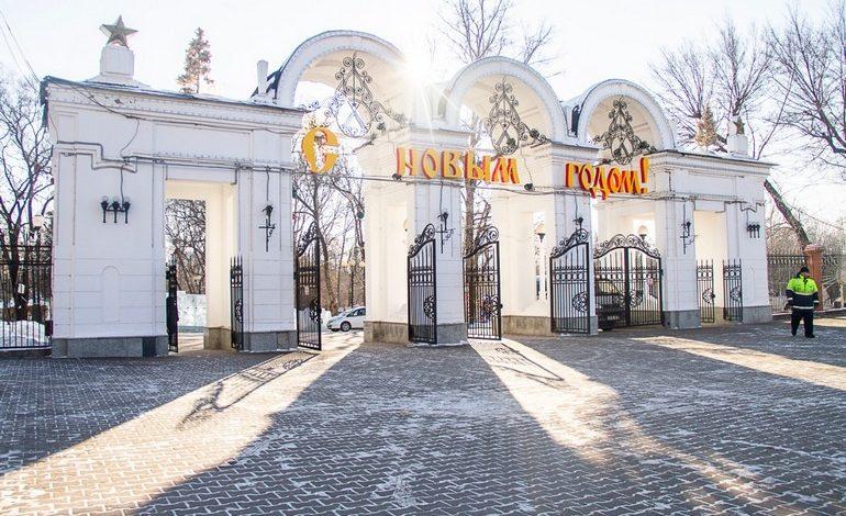 В парке Динамо застучали топоры: чтобы это значило?
