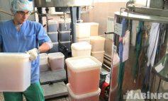 Медовая история: как повысить объёмы производства мёда на Дальнем Востоке?