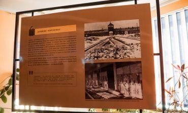 В шаге от смерти: хабаровчанам показали фотоисторию концлагеря Аушвиц
