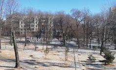 Слушали, да не услышали: в парке «Динамо» рекомендуют построить высотку