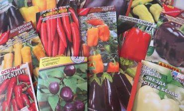 Как выбирать семена перцев и баклажанов