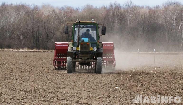Новые сорта овса и ячменя вырастят для аграриев Дальнего Востока