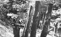 Враждебный нейтралитет: отношения с Японией в годы Великой Отечественной войны