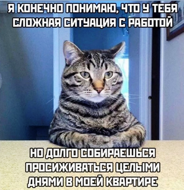коронавирус мемы