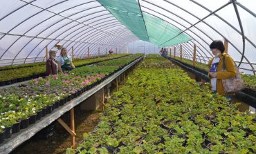 В Хабаровске открылся садовый центр «Герань»
