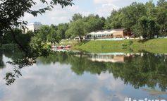Озеро Рица: коронавирус и краснокнижные лотосы в Хабаровске