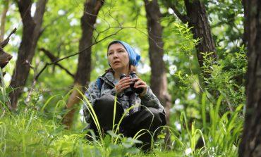 Тайна одной экспедиции: почему в Хабаровском крае растёт популяция черноклювых