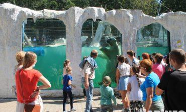 В гости к медведям: зоосад под Хабаровском наконец-то открылся